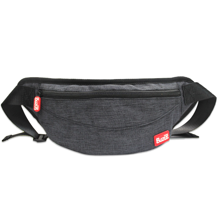 Casual Waist Pack for Nintendo Switch and Nintendo Switch Lite, BUZUS TS-6101 Protective Light Carrying Case